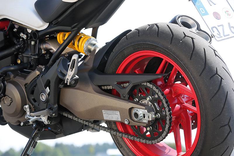 Ducati Monster 821 Schwinge
