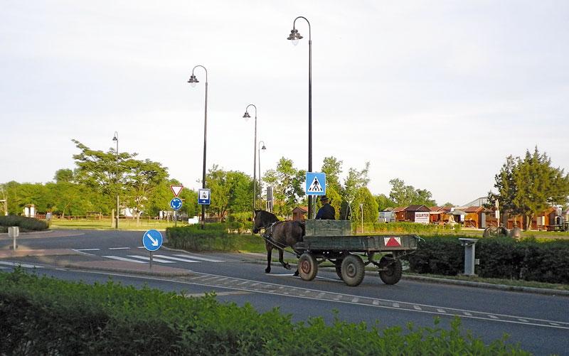 Pferdefuhrwerk in der Puszta