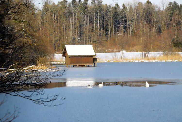 Gespann-Wintertour im Allgäu