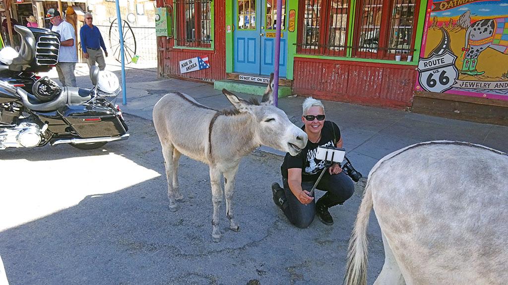 Die alte Goldgeräberstatt Oatman mit ihren wilden Eseln - USA - Wilder Westen