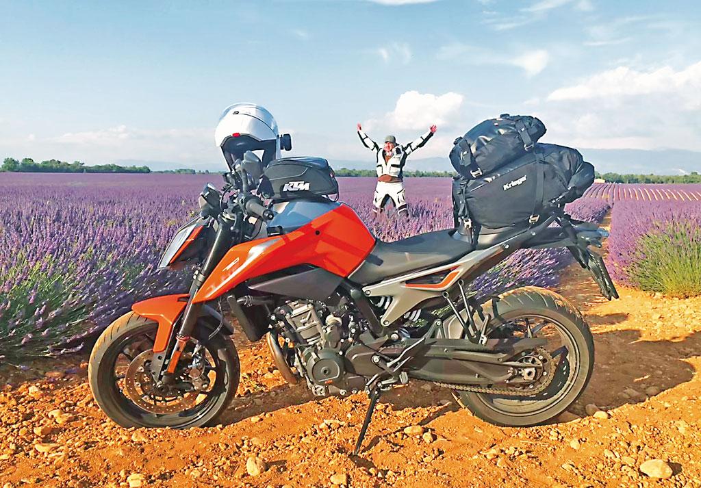 Lavendelfeld - Motorrad-Urlaub in der Provence